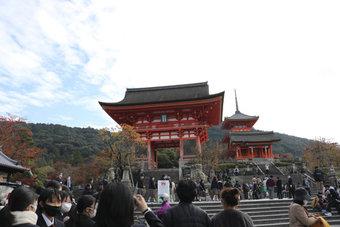 京都・奈良修学旅行を実施しました